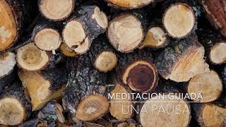 UNA PAUSA: Meditacion Guiada de 3 Minutos | A.G.A.P.E. Wellness