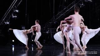 Art of Collaboration - Louisville Ballet