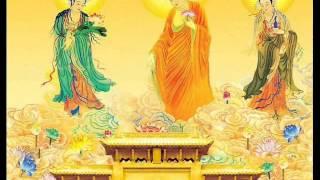 Tuyển tập nhạc hòa tấu Phật giáo không lời hay!