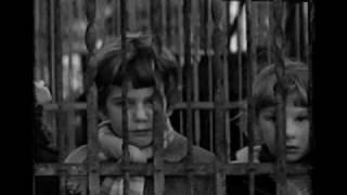 [5.13 MB] Rita Marcotulli: Omaggio a Truffaut