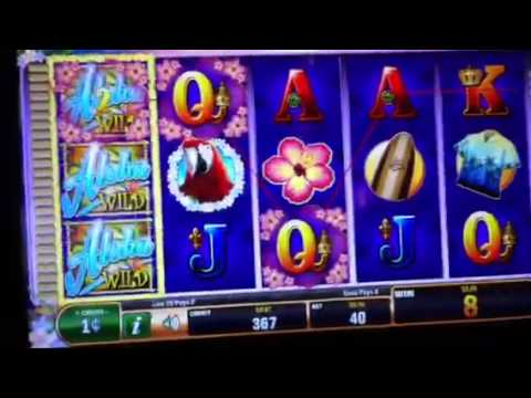 Great Player When Glancing At An On-line Casino
