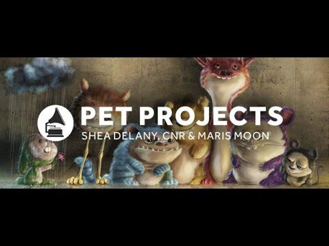 Pet Project [Deep Tech] (with guest Ne.Hau) 13.01.2017