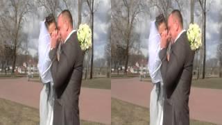 wedding clip 3D
