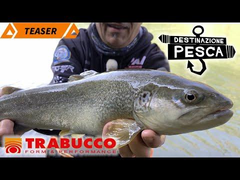 Trabucco TV - Destinazione Pesca - Le Trote Dell'Adige - Pesca A Spinning - S2T4