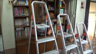Ladder Comparison - 2 Step, 3 Step and 4 Step with Bathla Ladder