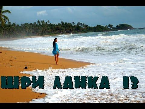 Шри-Ланка 13: Черепашья