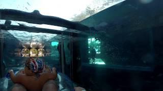 Аквапарк Атлантис Дубай(, 2013-12-10T20:00:26.000Z)