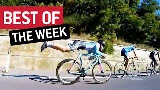 Best Videos Compilation Week 1 September 2016    JukinVideo<