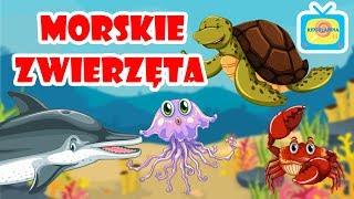 Zwierzęta dla dzieci - Morskie zwierzęta dla dzieci - Podwodny świat zwierząt