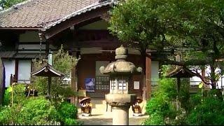 無量寺(東京・北)[ Muryoji Temple ]