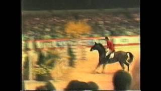 1987 Belgium Jumping Antwerpen, VHS52/2, With Eric Wauters, Grand Prix Volvo, Cavaliers Belges
