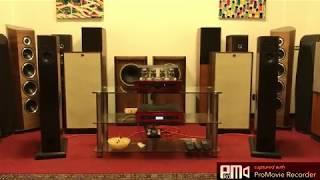 Audio Physic VIRGO - Wonderful sounding Loudspeakers