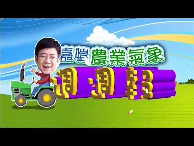 2020.11.2─嘉愷農業氣象週週報