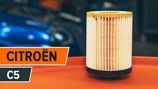 Prozkoumejte jak vyřešit problém s Olejovy filtr CITROËN: video průvodce
