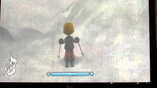 family ski and snowboard - nintendo wii