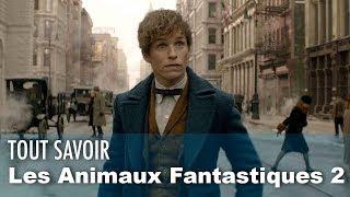 Animaux Fantastiques 2, 3, 4, 5 dates, histoires, TOUT savoir !