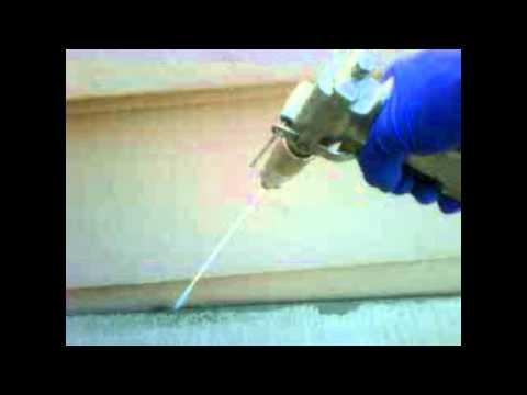 Scorpion Control Gilbert AZ
