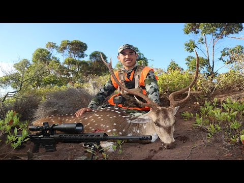 Lanai, Hawaii Rifle Hunt 2020 |