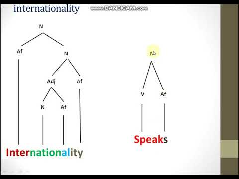 English Morphology Meeting 15 Breakdown The Word Structure Youtube