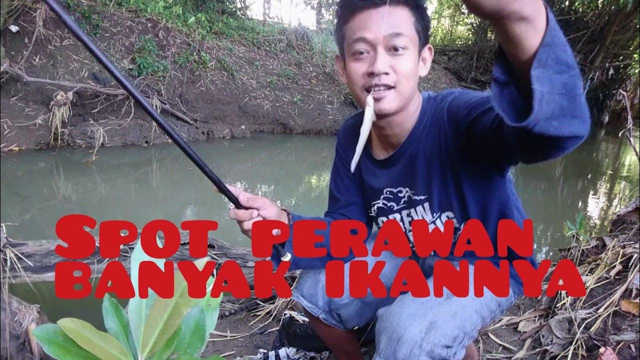 Spot Mancing Nila Di Denpasar