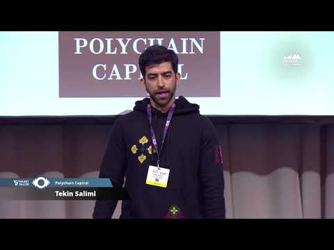 Crypto Summit 2018 | Tekin Salimi: Launching a Blockchain Project - Best Practice from Polychain