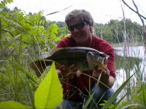 Bass fishing w the jicky joe 57 topwater action lure for Bass fishing in ohio