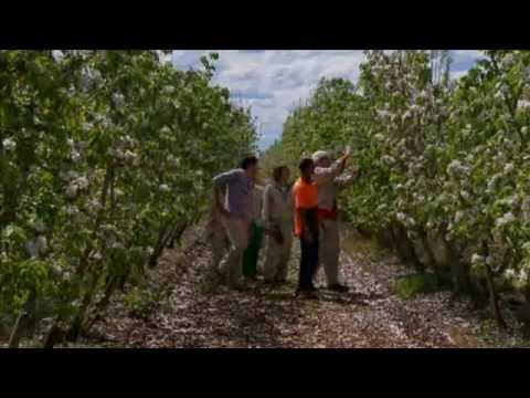 Australian Farm Stays and Tours