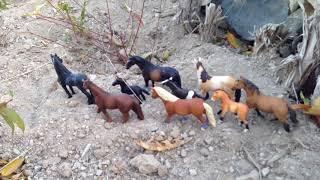 Story of a Herd| Schleich Horse Short Movie|