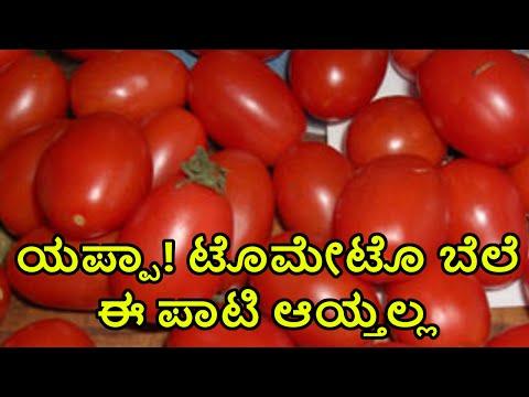 Tomatoes Price Raised Upto 70/- Per KG In Hubli   Oneindia Kannada