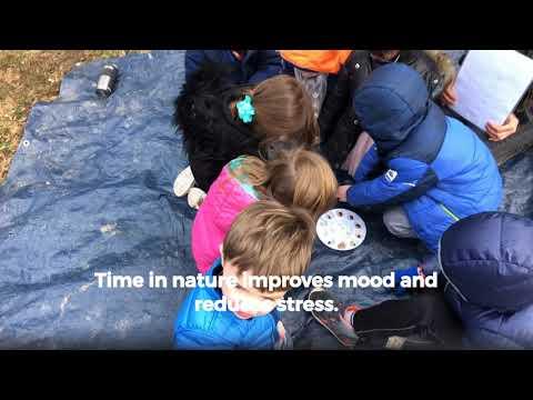 School Stories - The Greater Outdoors @ Brooksfield School