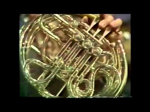 Williams's Star Wars Leia's Theme, Horn Solo