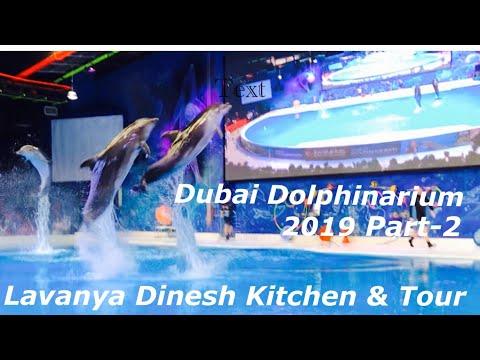Dubai dolphinarium -2 | Dolphin show part 2 | dolphin show 2019