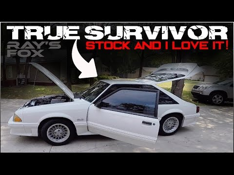 THE FOXBODY WE ALL WANT BUT CAN'T FIND.... OLD SCHOOL TO THE CORE!