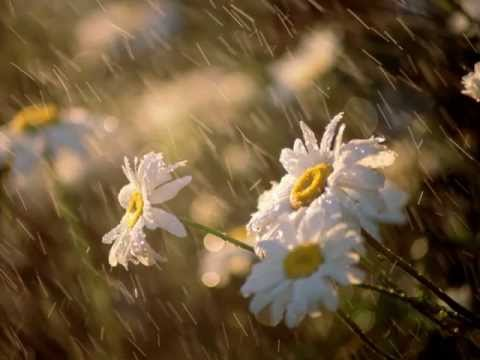 Hayley Westenra - Summer rain