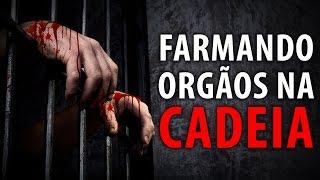 FARMANDO ORGÃOS NA CADEIA
