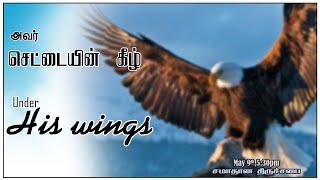 Under His Wings அவருடைய சேட்டைகளின் கீழ்  I HOP Church சமாதான திருச்சபை  I Sunday Service 9th May 21