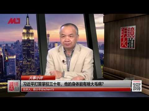 陈小平:王岐山是习近平最大威胁,接班人不是陈敏尔另有他人