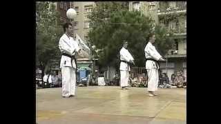 Kata Seienchin y Bunkai Kumite. Shito Ryu