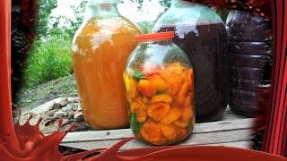 Как приготовить абрикосовую наливку (1часть).