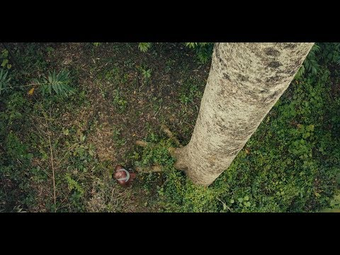 "Prudential's ""The Forest Man of India"" TV Advert"