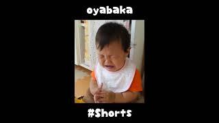 oyabaka7 #Shorts