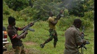 Bandits Continue To Attack President Buhari's Home State, Kill 10 In Fresh Attack