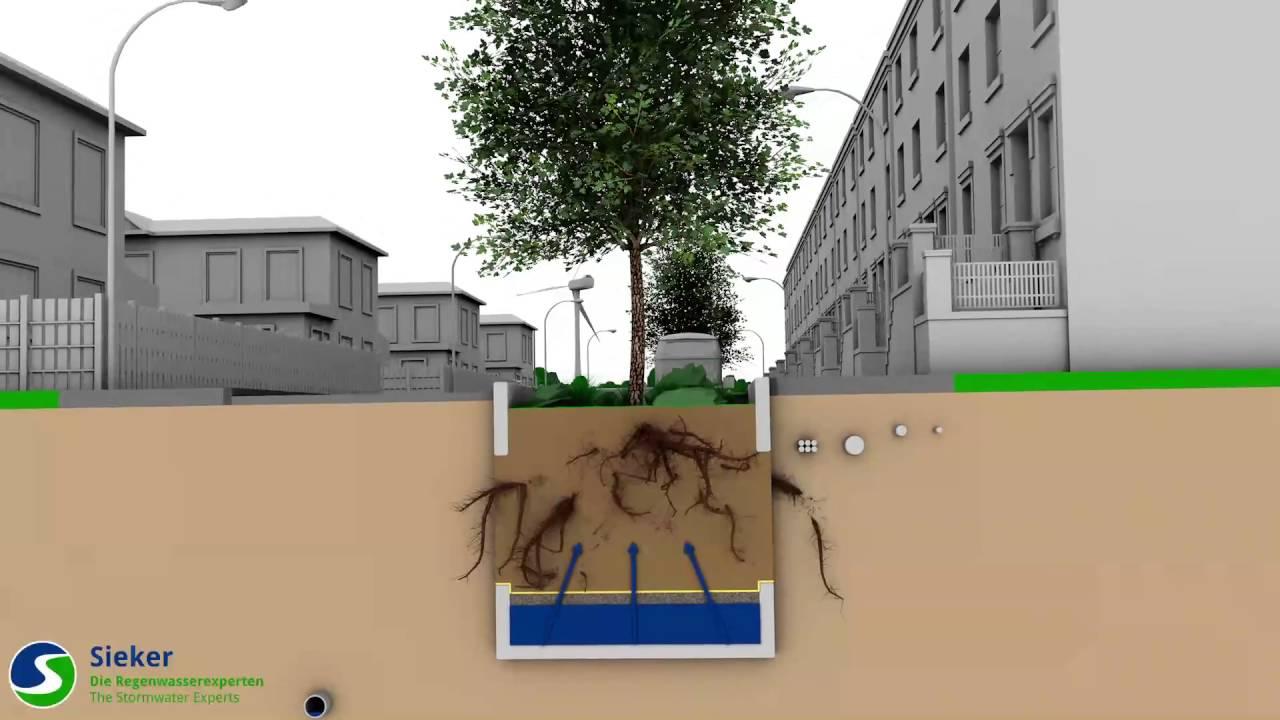 treedrain baum rigole mit versickerung. Black Bedroom Furniture Sets. Home Design Ideas