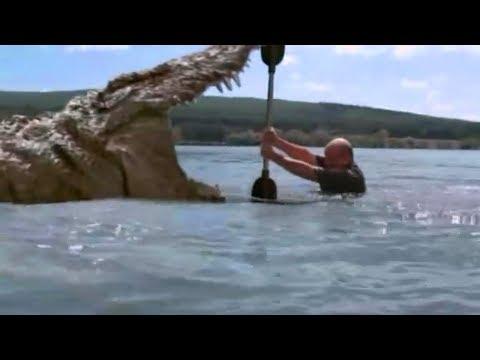 10岁小孩发现湖里有鳄鱼,于是拿生肉给它们吃,却不料闯了大祸