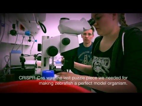 Science Café: CRISPR/Cas