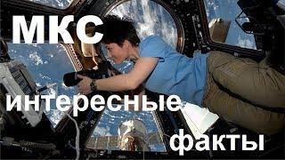 Всё самое интересное об МКС | Международная Космическая станция