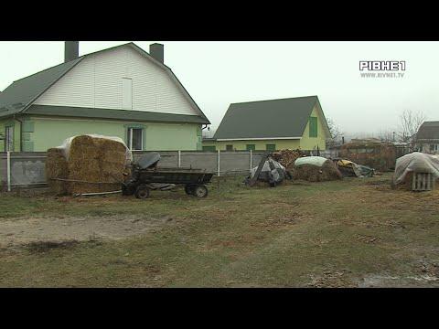 TVRivne1 / Рівне 1: На Рівненщині через подружжя, яке вже 28 років на стадії розлучення, страждає кінь