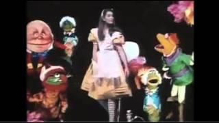 Executive Producer David Lazer - The Muppet Show