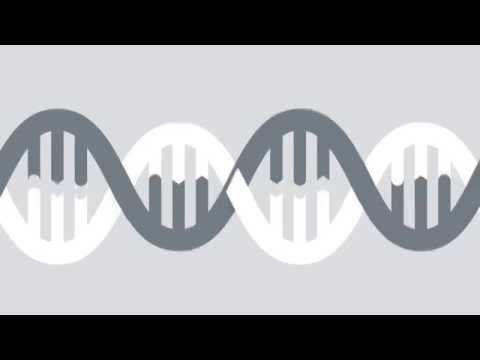 See what you've been missing: Explore RNA-Seq for Gene Expression research