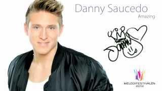 Danny Saucedo - Amazing (Audio)